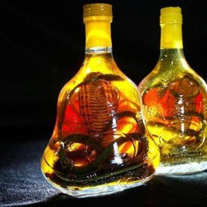VIETNAM BIGGEST SNAKE WINE BOTTLES OFFER