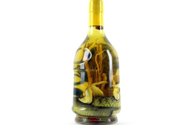 BIGGEST SCORPION WHISKEY BOTTLE