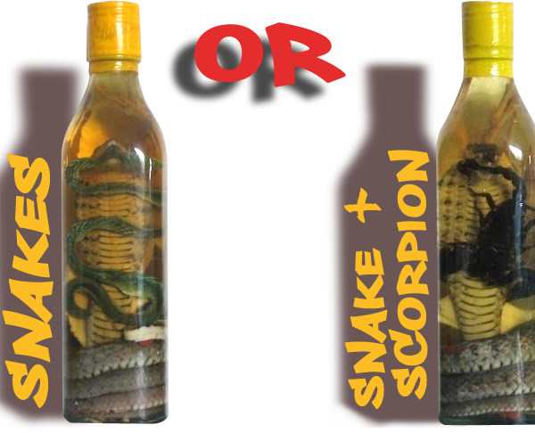 ORDER ONE MORE SNAKE WINE OR SCORPION WINE BOTTLE FOR 39 EUROS ONLY